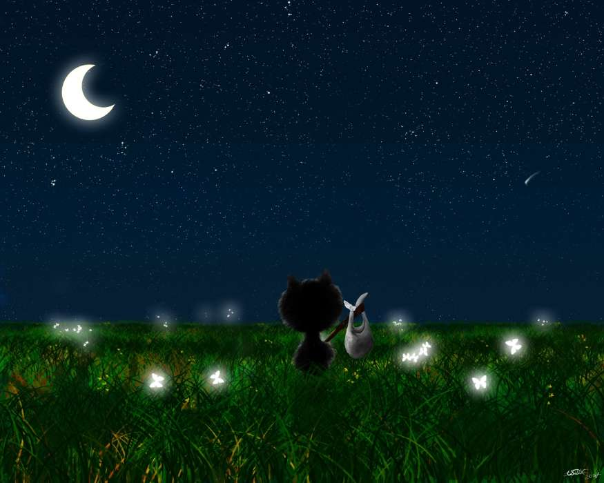 Landscape, Cats, Grass, Night, Moon, Drawings