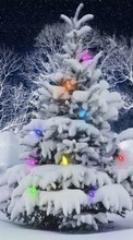 Fir-trees, New Year, Holidays, Christmas, Xmas, Snow