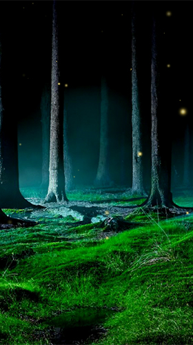 Scarica gratis sfondi animati Fireflies by Wallpapers and Backgrounds Live per telefoni di Android e tablet.