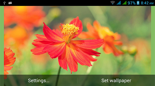 Scaricare Nature HD by Live Wallpapers Ltd. — sfondi animati gratuiti per l'Android su un Desktop.