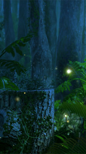 Fireflies by Wallpapers and Backgrounds Live