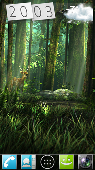 Forest HD