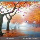 Scaricare Autumn by 3D Top Live Wallpaper per Android gratis.