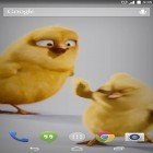 Oltre sfondi animati su Android Nature HD by Live Wallpapers Ltd., scarica apk gratis Chickens.