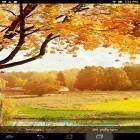 Oltre sfondi animati su Android Atlantis 3D pro, scarica apk gratis Falling leaves by Top Live Wallpapers.