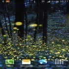 Oltre sfondi animati su Android Metaballs liquid HD, scarica apk gratis Fireflies by Phoenix Live Wallpapers.