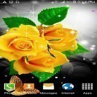 Oltre sfondi animati su Android Pinwheel by orchid, scarica apk gratis Flowers by villeHugh.