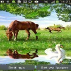 Oltre sfondi animati su Android Torment demon, scarica apk gratis Horses by Latest Live Wallpapers.