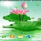 Oltre sfondi animati su Android Nature HD by Live Wallpapers Ltd., scarica apk gratis Lotus by villeHugh.