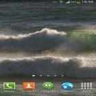Oltre sfondi animati su Android Cat in the box, scarica apk gratis Ocean waves by Andu Dun.