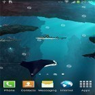 Scaricare Sharks 3D by BlackBird Wallpapers per Android gratis.