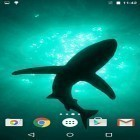 Oltre sfondi animati su Android Water ripple, scarica apk gratis Sharks by Fun Live Wallpapers.