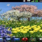 Oltre sfondi animati su Android Valentines Day by orchid, scarica apk gratis Spring flowers by SoundOfSource.