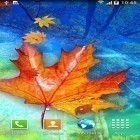 Oltre sfondi animati su Android Water ripple, scarica apk gratis Autumn leaves.