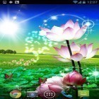 Oltre sfondi animati su Android Magic color, scarica apk gratis Beautiful lotus.