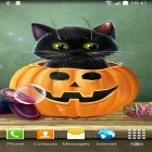 Oltre sfondi animati su Android Magic fluids, scarica apk gratis Cute Halloween.