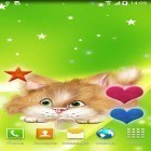 Oltre sfondi animati su Android Night mountains, scarica apk gratis Funny cat.