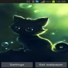 Oltre sfondi animati su Android Seeds of life, scarica apk gratis Lonely black kitty.