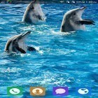 Oltre sfondi animati su Android Cute cat by Live Wallpapers 3D, scarica apk gratis Lovely dolphin.