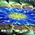 Oltre sfondi animati su Android Plasticine flowers, scarica apk gratis Neon flowers by Phoenix Live Wallpapers.