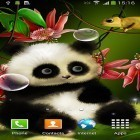 Oltre sfondi animati su Android Bubbles by Happy live wallpapers, scarica apk gratis Panda by Live wallpapers 3D.
