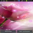 Oltre sfondi animati su Android Planets pack, scarica apk gratis Pink roses.