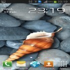 Oltre sfondi animati su Android Moonlight by Happy live wallpapers, scarica apk gratis Seashell by Memory lane.