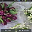 Oltre sfondi animati su Android Magic color, scarica apk gratis Springs lilie and tulips.