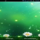 Oltre sfondi animati su Android Fairy party, scarica apk gratis Summer Flowers by Dynamic Live Wallpapers.