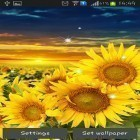 Oltre sfondi animati su Android Aquarium, scarica apk gratis Sunflower by Creative factory wallpapers.
