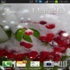 Oltre sfondi animati su Android Light drops pro, scarica apk gratis Winter berry.