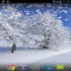 Oltre sfondi animati su Android Touch Xperia Z fly, scarica apk gratis Winter: Snow by Orchid.