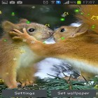 Oltre sfondi animati su Android Mini dino, scarica apk gratis Winter squirrel.