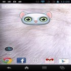 Oltre sfondi animati su Android Bubbles by Happy live wallpapers, scarica apk gratis Zoo: Cat.
